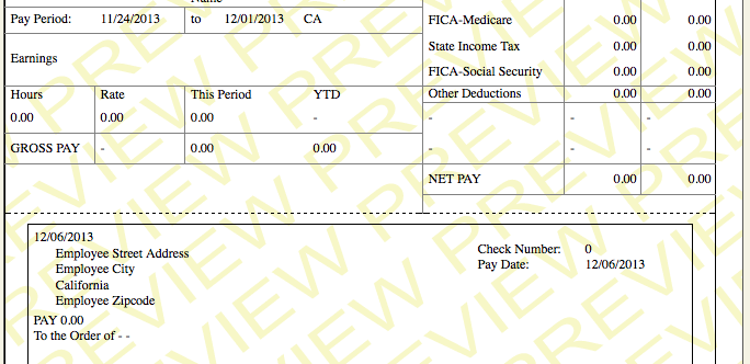 pay check stub template